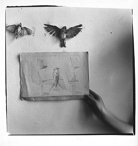 artwork_images_969_503078_francesca-woodman-1