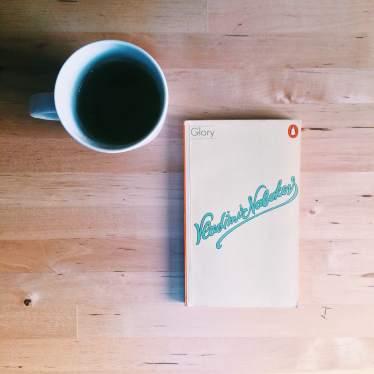 vladimir_nabokov_book